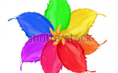 Stock-photo-colored-flower-blossom-made-of-paint-splashes-isolated-on-white-background-114432910