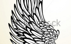 Stock-vector-wing-24860758