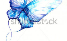 Stock-photo-delicate-blue-butterfly-hand-painted-picture-i-have-create-myself-with-watercolors-49027501