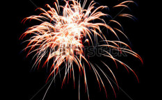 Stock-photo-firework-on-black-background-116228716