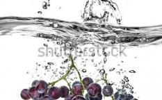Stock-photo-blue-grape-dropped-into-water-with-splash-isolated-on-white-52789363