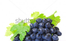 Stock-photo-fresh-grapes-brunch-with-green-leafs-113958364