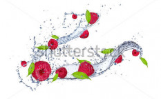 Stock-photo-fresh-raspberries-in-water-splash-isolated-on-white-background-118841455