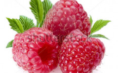 Stock-photo-raspberries-objects-on-white-background-8482240