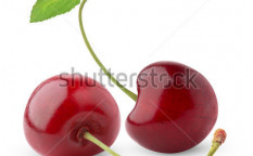 Stock-photo-sweet-cherry-isolated-on-white-58603078