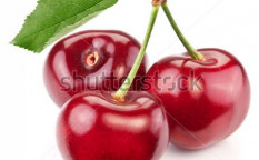Stock-photo-three-perfect-sweet-cherries-with-the-leaf-isolated-on-a-white-background-81783889