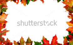 Stock-photo-autumn-outline-4659538