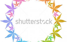 Stock-photo-circle-frame-of-colorful-leaves-isolated-on-white-leaves-in-rainbow-colors-copy-space-126287294