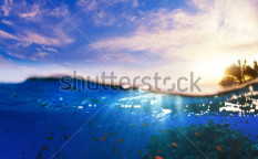 Stock-photo-design-template-underwater-part-with-coral-reef-and-tropical-sunset-skylight-splitted-by-waterline-120745744