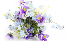 Stock-photo-bouquet-of-spring-flowers-on-white-isolated-background-55444411
