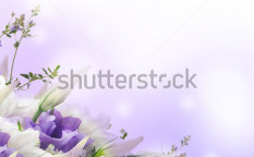 Stock-photo-bridal-bouquet-from-white-and-pink-flowers-119821756