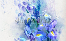 Stock-photo-watercolor-floral-background-beautiful-irises-100367603