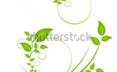 Stock-vector-floral-background-element-for-design-76331560