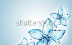 Stock-photo-flowers-made-of-water-splash-98092982